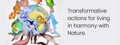 Réintégrer les droits de la Nature dans la Convention des Nations Unies sur la diversité biologique (CDB)